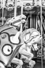 Angry Horse (Robert Borden) Tags: horse carousel angryhorse crazyhorse white bw blackandwhite mono monochrome santacruz centralcoast centralcal cali california boardwalk beach thanksgiving westcoast