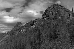 I Was Immersing Myself in Nature with Mountains and Forest All Around (Black and White) (thor_mark ) Tags: alaska2019 alaskaintermountainranges alaskayukonranges angelrockstrail azimuth61 blackwhite blueskies bluesskieswithclouds chenariverstaterecreationarea day3 dxophotolab2edited eastcentralalaska evergreentrees evergreens hillsideoftrees imagecapturewitharsenal landscape lookingne lookingupmountainside lookingupamountainside mountainpeak mountains mountainsindistance mountainsoffindistance mountainside nature nikond800e northfairbanksarea outside partlycloudy portfolio project365 ridgeline ridge ridges rockyoutcrop rollinghillsides sunny trees witharsenal chenariverstaterecreationare alaska unitedstates