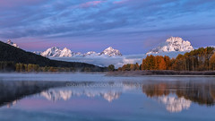Light At The Start Of The Day (chasingthelight10) Tags: events photography travel landscapes foliage mountains meadows rivers sunrise sunset places wyoming grandtetonnationalpark oxbowbend willowflats snakeriver otherkeywords dawn willows things reflection