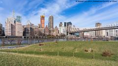 Campus View of Midtown (20191129-DSC01128-Edit) (Michael.Lee.Pics.NYC) Tags: newyork rooseveltisland cornelltechcampus eastriver queensborobridge midtown architecture cityscape skyline sutton58 bridge sony a7rm4 fe24105mmf4g
