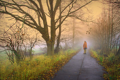 The Power of Now (Mah Nava) Tags: thepowerofnow power now gegenwart jetzt autumn herbst man human mensch natur nature nebel fog foggy deutschland path thepath derweg baum tree