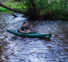 Cedar Water (BrilliantBill) Tags: pine pinebarrens pinelands southjersey newjersey river greateggharborriver kayak paddler paddling fujifilm fuji fujixpro1 fuji35mm fuji35mm14 cedar cedarwater