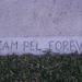 Team Pel Forever