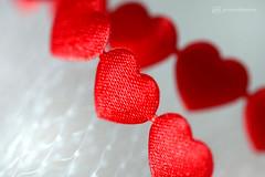 romantic red (photos4dreams) Tags: red hearts herzen rot macromondays macrolens photos4dreams p4d photos4dreamz hmm