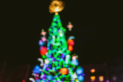 Kaunas Christmas Tree 2019
