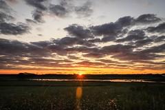last sunrise (Yuki (8-ballmabelleamie)) Tags: glacialpark dawn daybreak sunrise prairie land grassland field marsh wetland creek clouds horizon sunrays rays ghost wildflowers landscape illinois mchenrycounty manualmode
