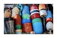 Primary colors (rlonpine) Tags: coastal newengland massachusetts rockport rlonpine