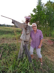 scarecrow, หุ่นไล่กา 1 (SierraSunrise) Tags: thailand phonphisai nongkhai isaan esarn farming agriculture scarecrow หุ่นไล่กา