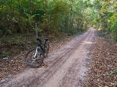 Forest Road 2 (SierraSunrise) Tags: thailand phonphisai nongkhai isaan esarn roads dirt unpaved forest