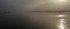 Ships that pass in the mist... (Peter ( phonepics only) Eijkman) Tags: amsterdam zaanstad zaandam zaan zaanstreekwaterland noordzeekanaal noordzee fog mist nederland netherlands nederlandse noordholland holland