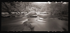 Summer on the Narrows # 2 (DRCPhoto) Tags: zeroimage612b pinhole lenslessphotography kodakbw400cn 120film cheatriver prestoncounty westvirginia