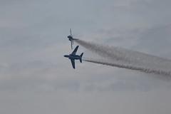 1Q5A0350 (Kazuya_N) Tags: 2019 december jasdf hyakuri airshow ibaraki t4 blueimpulse