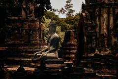 Ayutthaya – Wat Maha That (Thomas Mulchi) Tags: ramapublicpark ayutthayahistoricalpark phranakhonsiayutthayadistrict thailand 2019 wat buddhism buddhisttemple temple buddha pagoda phranakhonsiayutthaya happyplanet asiafavorites