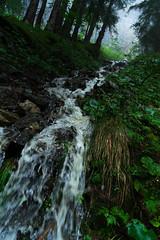 F l o o d s ([ I w a n ]) Tags: kandersteg berneroberland switzerland sonya7ii rain floods storm