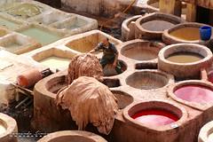 Chouwara-Fez (alanchanflor) Tags: canon color marruecos fez colores tintes trabajo hombre tenería curtiduría