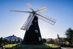 Holgate Windmill, November 2019 - 13