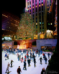 Merry Midtown Manhattan (Dan Haug) Tags: midtown manhattan newyorkcity nyc rockefellercenter topoftherock skating christmastree travel holiday merry fujifilm fujixseries xt1 xf14mmf28r mirrorless