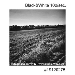 Field is prepared in the spring - This black and white photo is NOT sharp due to camera characteristic. Taken on film with a medium format camera (jbeugephoto) Tags: nature agriculture field landscape land soil spring farming agricultural rural preparation farmland season cultivation natural countryside cultivated harrow scene cultivate outdoor country prepared