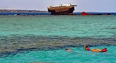 snorkeling on the safe side (werner boehm *) Tags: wernerboehm sinai redsea wrack wreck snorkeling riff reef streetoftiran tiranisland