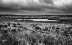 Barbrook Reservoir (l4ts) Tags: landscape derbyshire peakdistrict darkpeak bigmoor barbrookreservoir breached moorland pond cloudscape clouds blackwhite monochrome easternmoorspartnership
