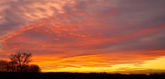 Photo of Sunset - Wimborne - 2nd December 2019