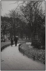 (devonaldjohndavies) Tags: rollei pyrocathd kentmere 400 snow 35s viewfinder gorsedd gardens