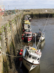 Photo of st andrews harbour