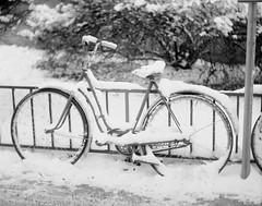 Chilly (Tony Bokeh Larsson) Tags: 4x5 era4x5chinesesheetfilm2009 szabad4x5 kodakhc110 largeformat snow winter sweden bicycle street fence film sheet chinese