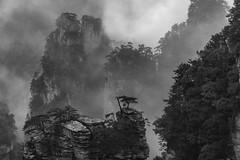 *lost world* (Albert Wirtz @ Landscape and Nature Photography) Tags: zhangjiajie zhangjiajienationalpark greatwall china backwhite bw fog mist nebel nebbia laniebla landscape landschaft paysage paisaje paesaggio campo campagne campagna nature natur naturaleza natura brume bruma brouillard lostworld karstberge karstmountains pandora longexposure langzeitbelichtung asia asien nikon d810 schwarzweis monoton mystic mystical mystisch fineart landscapefineart fineartphotography hunan tianzi avatar jamescameron worldofpandora