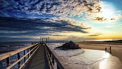 Matagorda Beach (LDMcCleary) Tags: