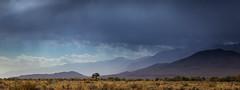 Owens Valley (dubland) Tags: california calebweston landscape sierranevada travel bigpine easternsierra owensvalley mountains highway395 tree clouds