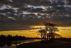 Sunrise (jimpillion) Tags: sunrise murrellsinlet southcarolina georgetowncounty sunset tree ambient naturephotography nature photography