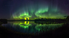 Night Dancer (M.T.L Photography) Tags: auroraborealis northernlights nightdancer stars water reflection dark sky autumn trees forest green grass nikond810 mtlphotography bigdipper httpsmikkoleinonencom panoramicauroraphotography