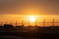 百里基地航空祭 (kanon_7) Tags: 百里基地 百里基地航空祭 航空祭