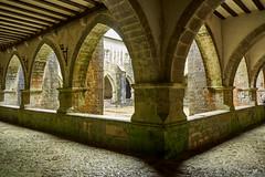 Claustro Roncesvalles (Toni de Ros) Tags: roncesvalles navarra nafarroa gòtic gótico claustro