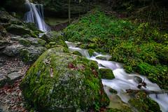 Lorzentobel (andre.kirtz) Tags: zug moos wasserfall wasser november schweiz lorzentobel natur innerschweiz stein