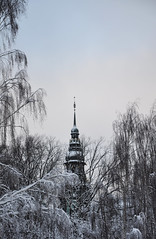 The tower (DameBoudicca) Tags: sweden sverige schweden suecia suède svezia スウェーデン stockholm estocolmo stoccolma ストックホルム tree träd baum arbre árbol albero 木 snow snö schnee nieve neige neve 雪 winter vinter hiver inverno invierno 冬 nordiskamuseet tower torn torre tour turm 塔 djurgården