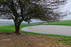 Frozen (Croydon Clicker) Tags: ice pond frozen tree hill ditchlingbeacon southdowns sussex nikon