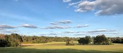 A familiar greenway field (readerwalker) Tags: miccosukeegreenway greenways parks fields trees tallahassee