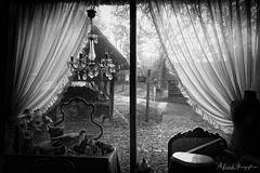 Stainy Windows (Alfred Grupstra) Tags: curtain blackandwhite window people indoors elegance domesticroom architecture chair indoor