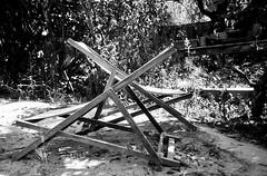 Il fait -14 à Montréal... alors on va s'asseoir dans le jardin à Marseille et on va se jaser au soleil... (woltarise) Tags: l'intimitéd'unlieupartagé repos soleil chaiseslongues jardin marseille compact ilfordfp4100 film argentique septembre2018 france
