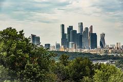 Modern Moscow- Downtown... (Renato Pizzutti) Tags: russia mosca moscow wtc businesscenter grattacieli skyscraper alberi nikon renatopizzutti