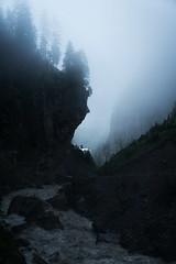 t h i s   g a m e   o f   g h o s t s ([ I w a n ]) Tags: berneroberland kandersteg gasterntal fog rain mountaincult mountains alps sonya7ii switzerland