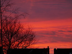 Winter sunset (seenbynick) Tags: sunseting trees houses gardens nature outdoors clouds beautifual southport