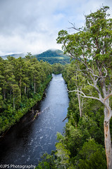 tasmania (JPS-Photography) Tags: nikon australia d7000 water tasmania tree river sky