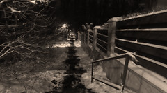 Stairs (fargo_1980) Tags: winter mood atmosphere beauty wonder magic land landscape ice cold freeze frozen white night evening hill mountain lights tree forest wind flag hungary magyarország budapest top december dark scaninavian scandic north