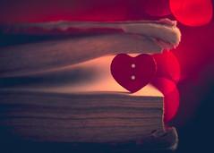 Love yourself (Ro Cafe) Tags: extensiontubes mm macromondays pentacon50mmf18 red sonya7iii macro vintagelens heart button book bokeh softfocus