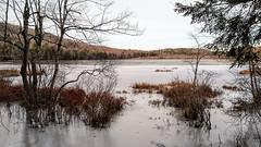 Shed Pond, Maine (jtr27) Tags: img20191201142434l jtr27 shedpond shedd pond ice maine landscape motorola moto g7 motog droid