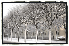 Wind detector (Listenwave Photography) Tags: ngc flickrelite sanktpetersburg city snow wind winter foveon listenwave street