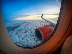 SAS (mairmaximilian) Tags: sas airbus a320 a320neo sunset cruising night scandinavian airlines inflight plane avgeek